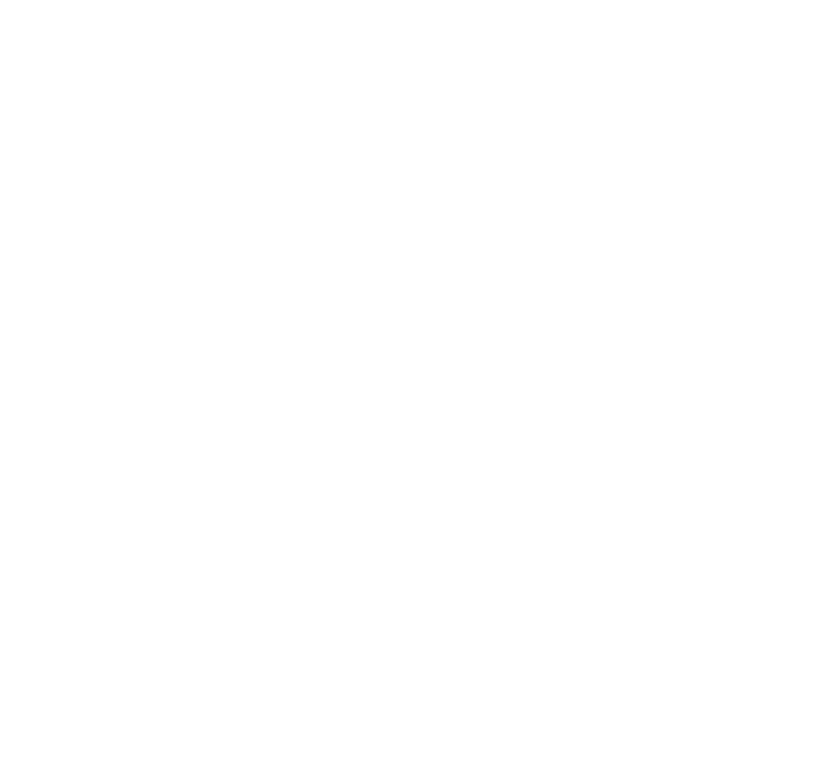 Values_pentagono